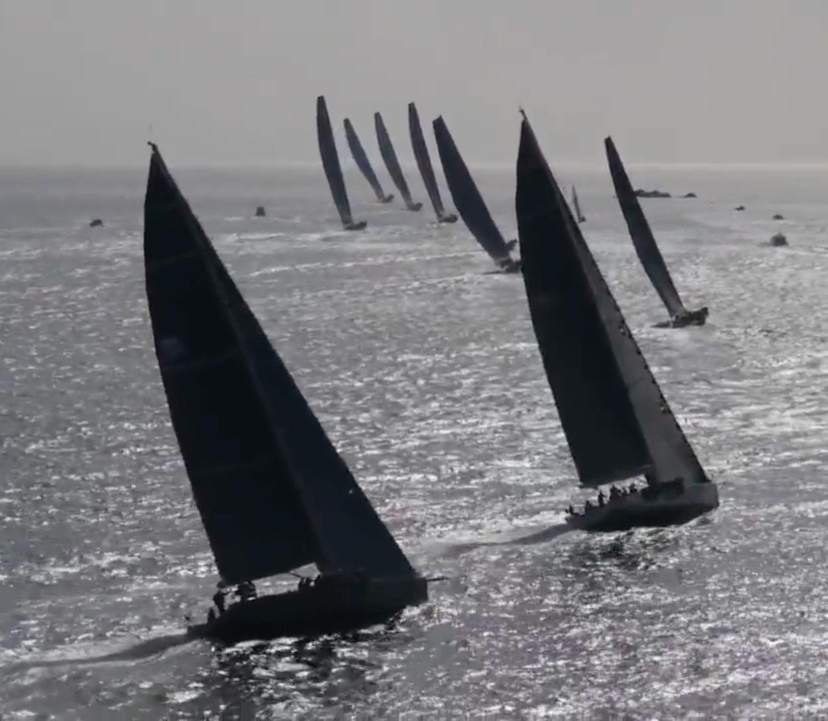 wally-regatta